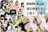 株式会社Re STYLEのブログ